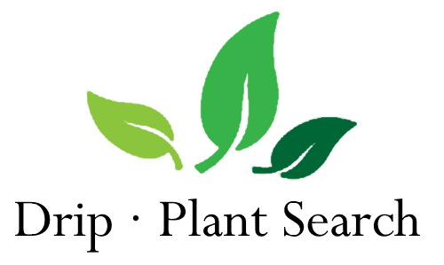 Drip Plant Search Logo